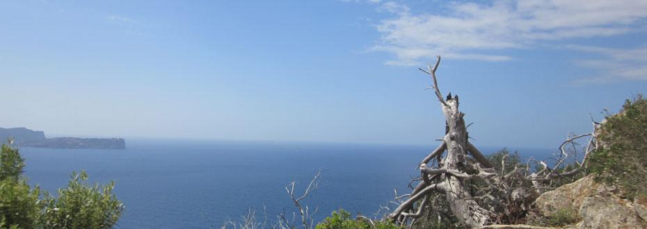 Blick über Meer